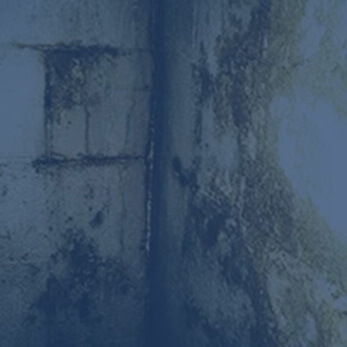 Mold & Prevention Removal | Basement Doctor Akron